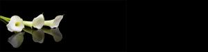 zakład pogrzebowy warszawa elegia baner